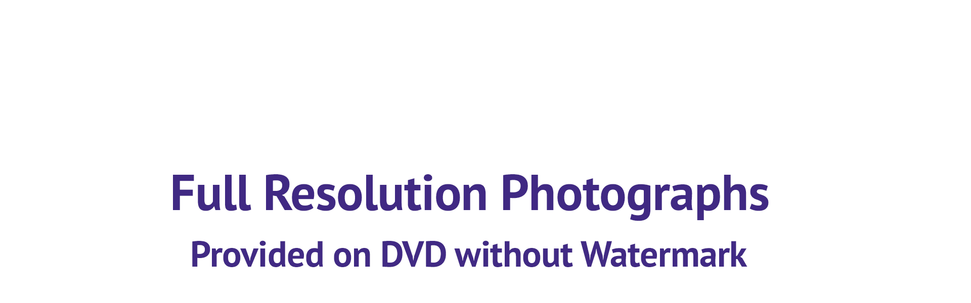 Full Resolution Photographs Provided on DVD without Watermark